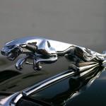 La marca del jaguar