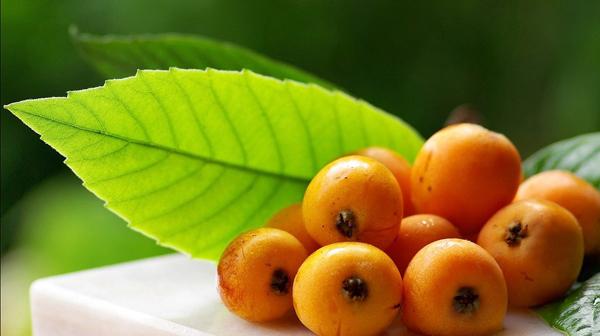 Nispero Fruta el Nispero Fruta de Temporada