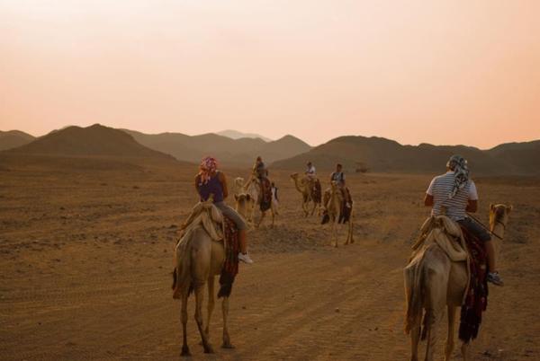 excursiones a camello marsa alam