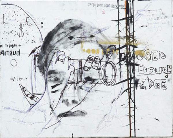 Lhomme-pressé-Peter-Doherty-76x61