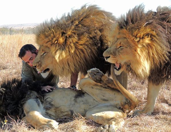 escena kevin leones