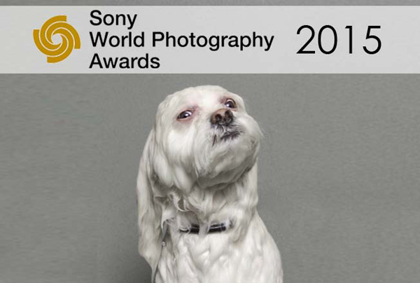 Sony-World-Photography-Awards-2015