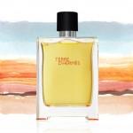 El perfume para hombre Terre D´Hermés
