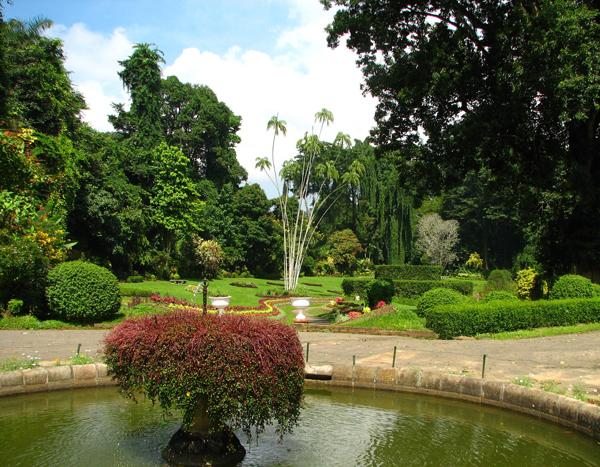 Kandy_Botanical_Garden,_Sri_Lanka