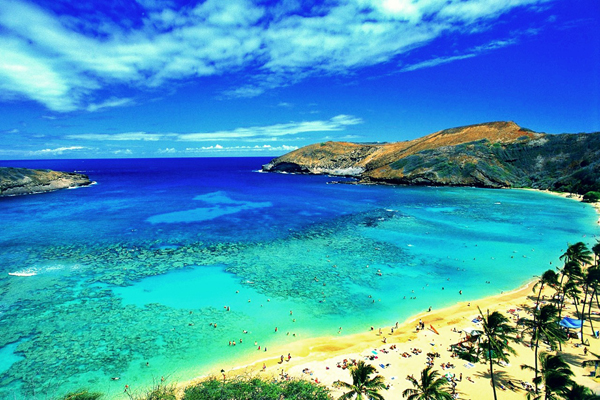 honolulu-beach