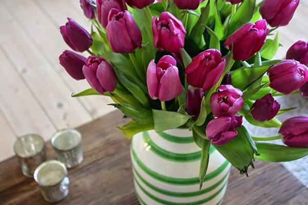 Las Flores Más Lujosas Para Regalar Estilos De Vida Estilos De Vida