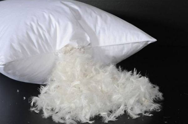 almohada-de-plumas