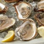 ostras-afrodisiacas (1)