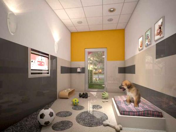 Hoteles 5 estrellas para perros estilos de vida for Hoteles de lujo fotos