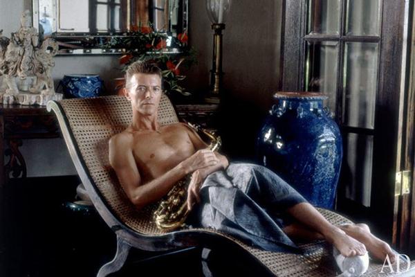 dam-images-celebrity-homes-1992-david-bowie-david-bowie-06-portrait-h670