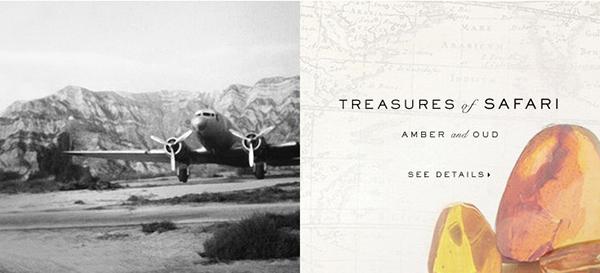 treasures of safari