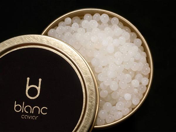 blanc-caviar-caviar-blanco