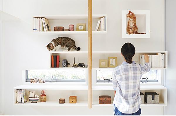casas-gatos-cat-funiture