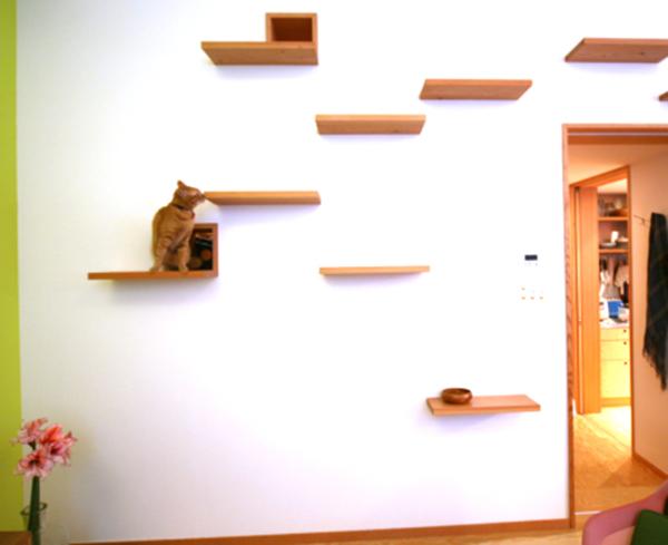 casas-gatos-cathouse-keyoperation-02