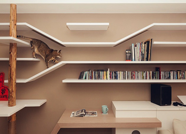 casas-gatos-contemporary-perfect-cat-house-in-taiwan-1