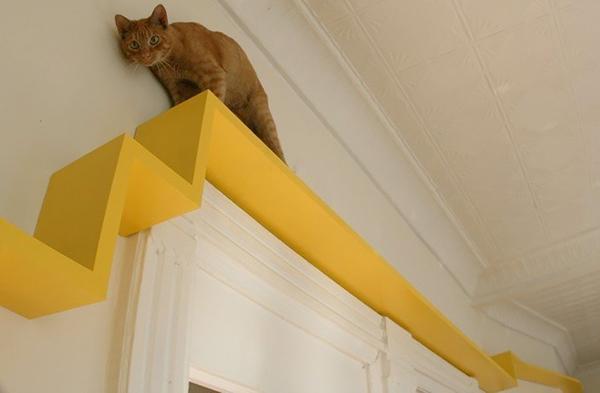 casas-gatos-playground-ultimate-indoor-fun-for-cats-camino