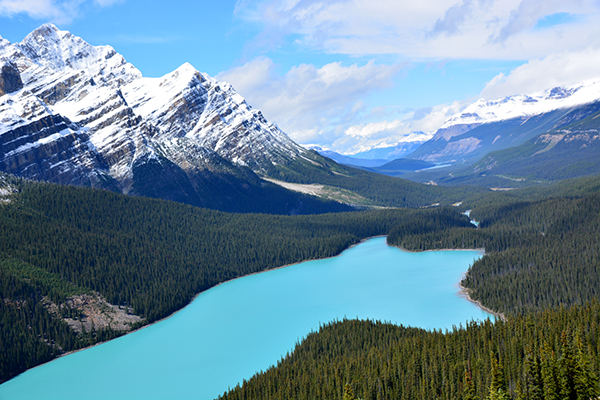 fairmont-chateau-lake-louise-canada-peyto lake