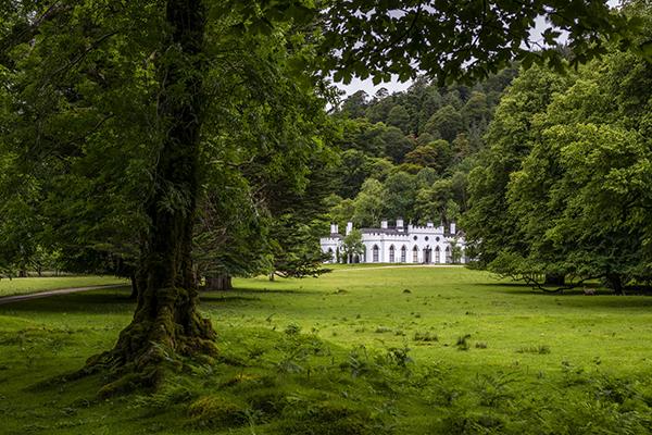 LUGGALA - IRELAND