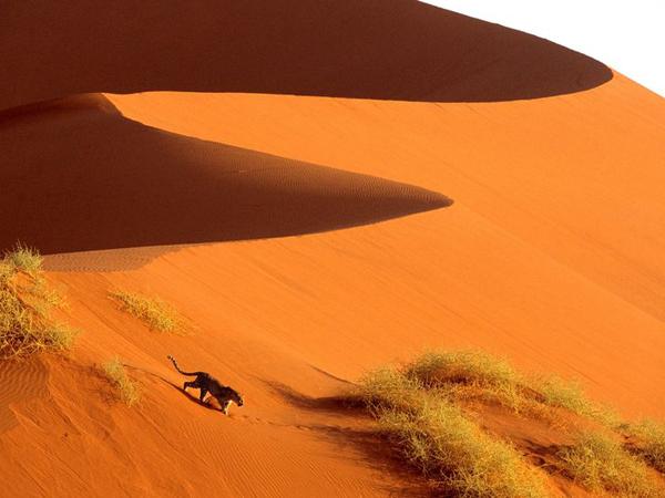 Namibia una experiencia única