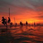 Un viaje de lujo a Sri Lanka