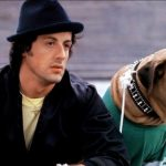 Los famosos perros de los famosos